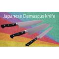 Japanese Damascus Knife